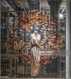 papillon suspendus