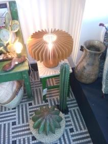 Acte1 cactus et lumière
