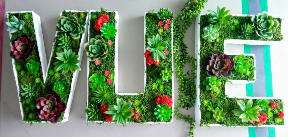 lettres 3D succulentes